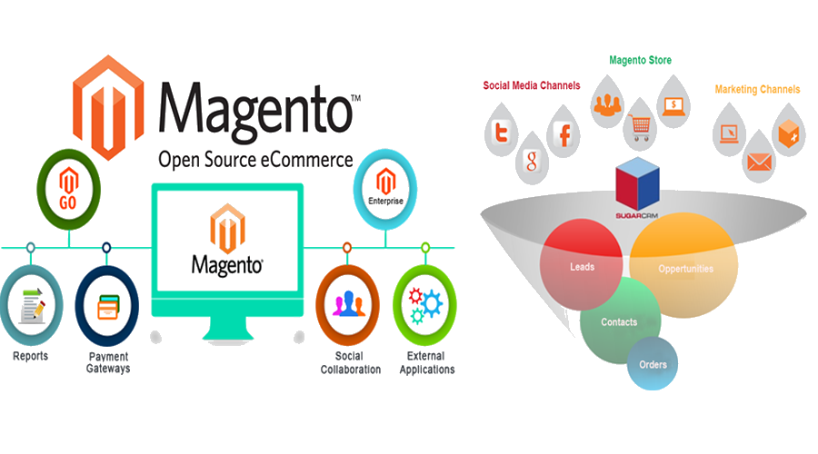 Magento E-commerce Website Development